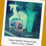 EWG Guide to Healthy Cleaning. Helpful or Confusing?