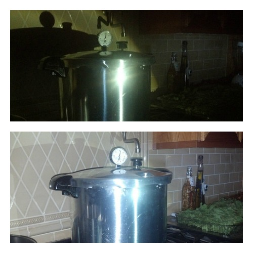LED Canning in the Dark!  Above is Picture without Flash and Below with My Flash