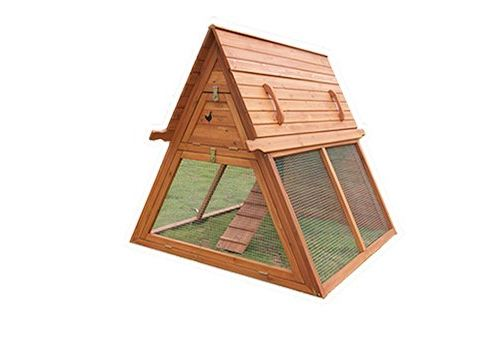 Don't You Love this Chicken Coop?