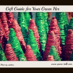 Holiday Gift Guide for Your Green Her
