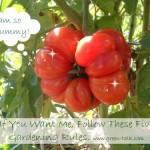 Garden Rules for a Successful Garden