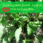Sorrel Recipes