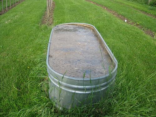 Neil's watering gardening device