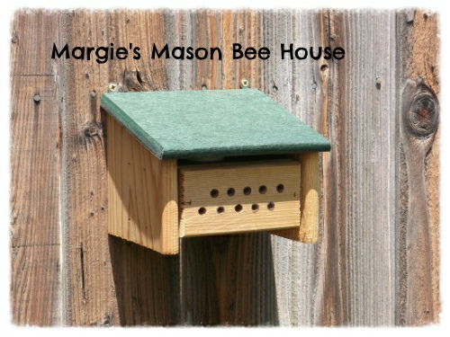 Margie's Mason Bee House