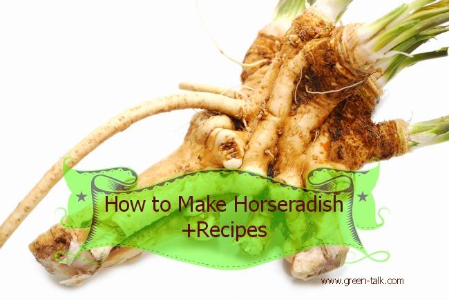 How to Make Horseradish