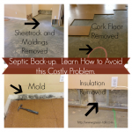 Septic Backup. How to avoid.