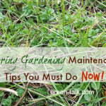 Spring Gardening Maintenance Tips
