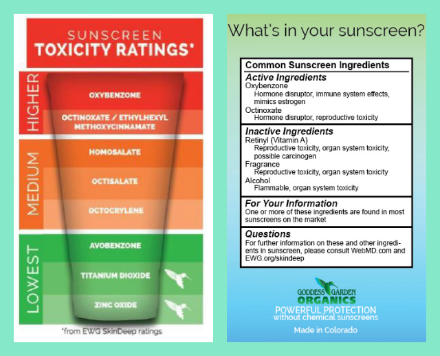 Conventional Sunscreen Toxic Ingredients