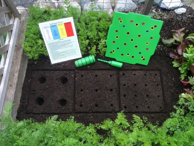 Square foot gardening layout so easy with the seed square for Four foot garden blueprint