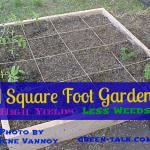 Square Foot Garden Convert