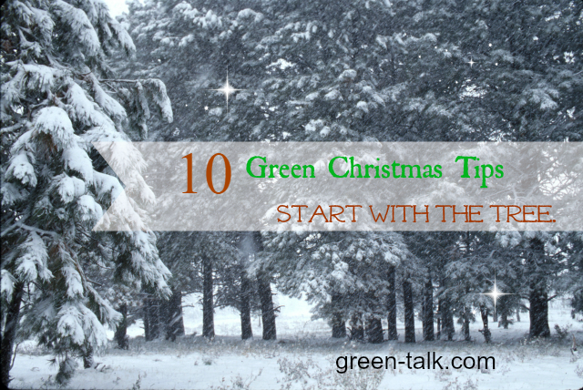 Green Christmas Tips