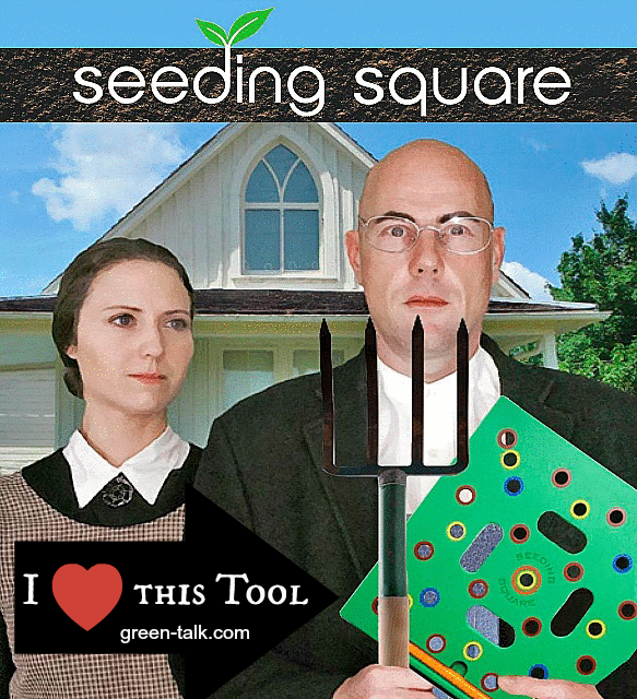 seedling square plant seeds