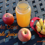 apple core apple juice