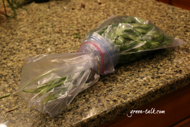 how to freeze parsley