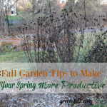 5 Fall Garden Maintenance Tips to Make Spring Productive
