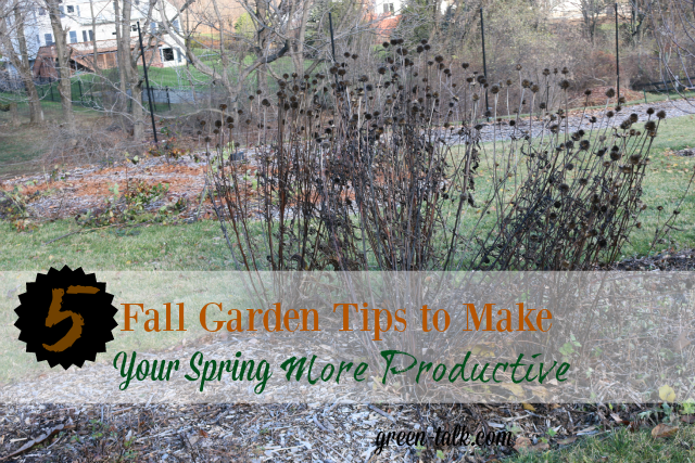 fall garden maintenance