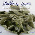 Blackberry Leaves:  Check Out Their Health Benefits