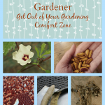 Be an Adventurous Gardener: Try These 5 Seeds