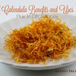 Calendula Benefits and Uses: Plus 16 DIY Recipes