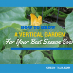Grow Vertically Using Trellis for Your Best Season Ever.