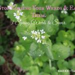 Eat Weeds: 3 Spring Weeds to Savor