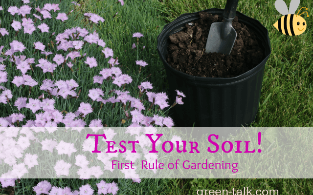 Test Your Soil! 1st Rule of Gardening.