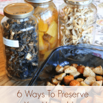 preserve vegetables