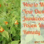 jewelweed poison ivy remedy