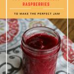 DeSeed Raspberries Easily to Make the Perfect Jam