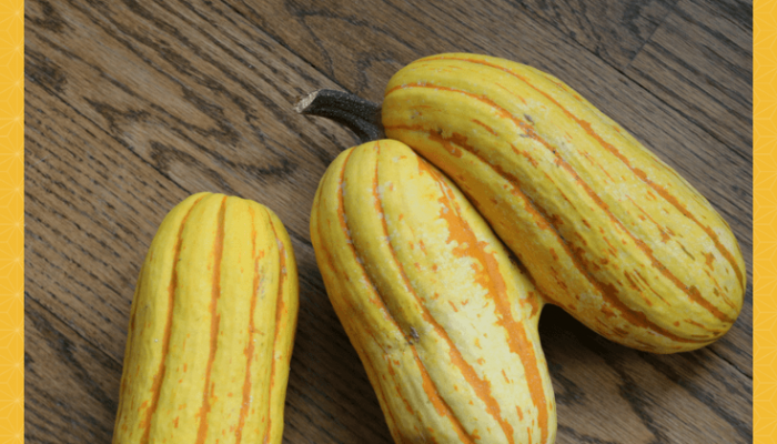 Delicata Squash:  Oh So Delicious. Move Over Butternut