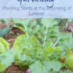 Fall Vegetable Gardening.  Starts at the Beginning of Summer