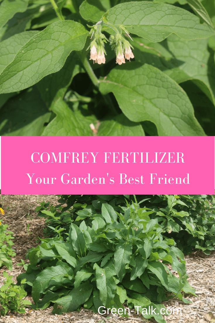 comfrey fertilizer